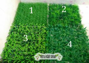 Jenis - jenis rumput sintetis